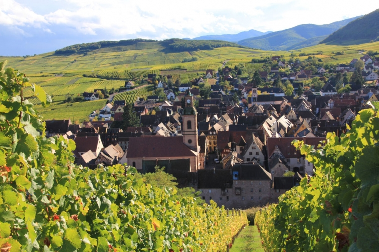 sejour alsace senior excursions